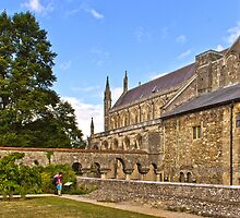 Winchester Cathedral  by vivsworld