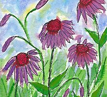 Purple Coneflowers Watercolor by AngelaBishop