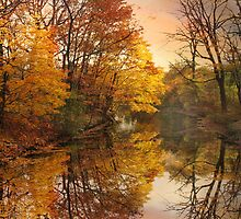 Foliage Reflected by Jessica Jenney