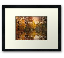 Foliage Reflected Framed Print