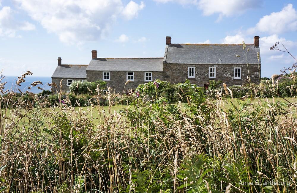 three houses by Anne Scantlebury