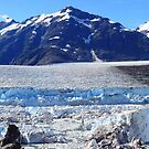 Foot of the glacier by zumi