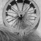 Coalmine  Wheel by Judy Woodman