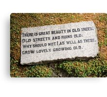 words for the aged Canvas Print