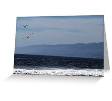 Birds Flying At The Beach Greeting Card