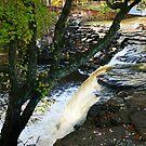 Waterfall at Davies Bridge in Autumn by Lisa G. Putman