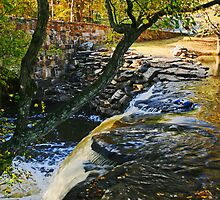 Waterfall at Davies Bridge in Autumn II by Lisa G. Putman