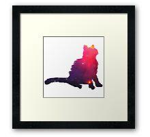 Serene Kitty Framed Print