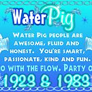 1983 2043 Chinese zodiac born in year of Water Pig by Valxart by Valxart