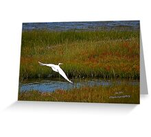 We have Lift Off! Greeting Card