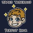 Captain James Tiberius Perfect Hair by Paintz
