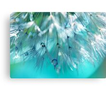 Turquoise Dandy Delight Canvas Print