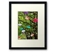 Blown Away! Framed Print