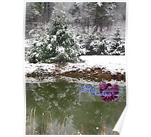 snowy reflections Poster