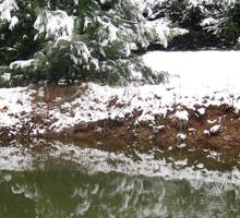 snowy reflections Sticker