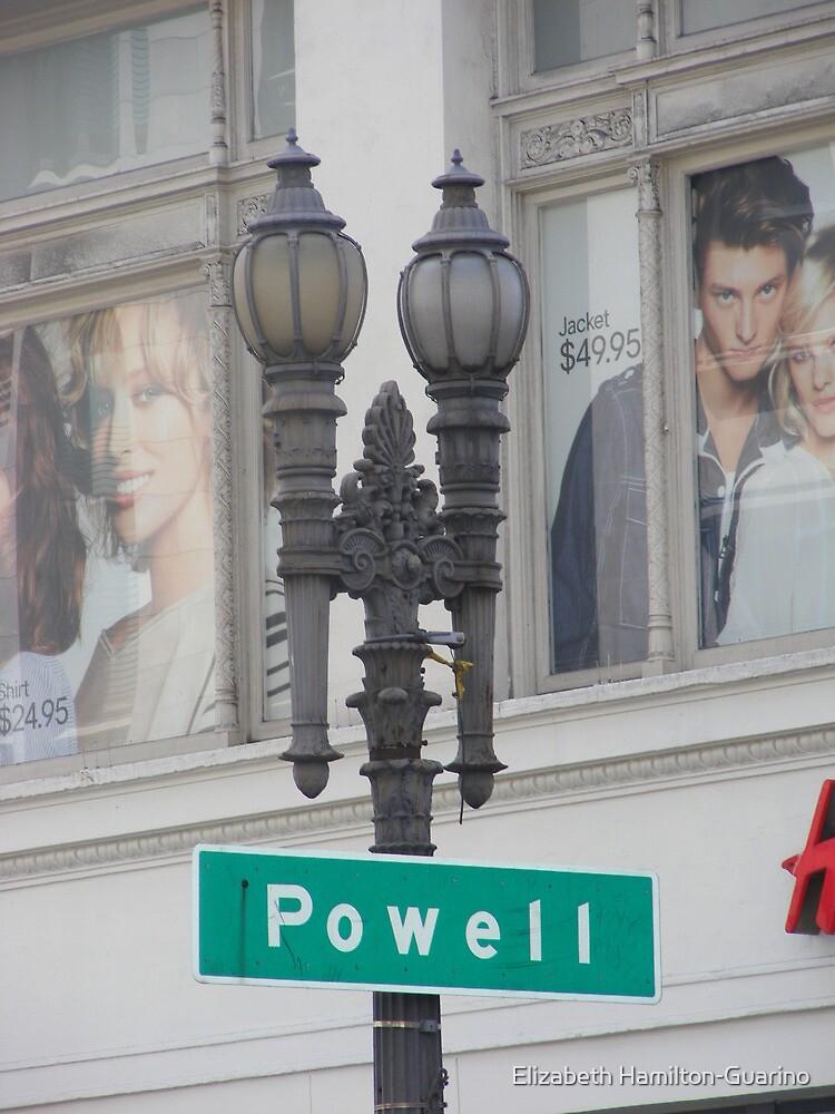 Powell by Elizabeth Hamilton-Guarino
