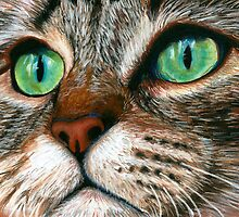 Tabby Cat Pastel by AngelaBishop