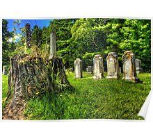 Mt. Repose Cemetery, Montville, Maine Poster
