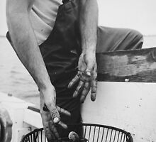 Clam Digger, Cold Spring Harbor NY by Jennifer LaCava