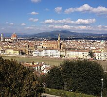 Florence from above by Jemma Baalham