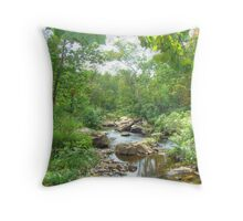 September Arrives At The Unami Creek Throw Pillow