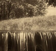 Trees and waterfall in sepia tone by fodorpetya