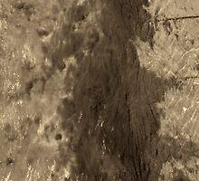 Water fairy by fodorpetya