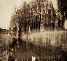 Trees and waterfall in sepia tone 3 by fodorpetya
