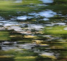 View from a speeding train by Themis