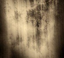 Leaves, water and asphalt by fodorpetya