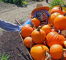 Welcome to the Pumpkin Patch by Lesliebc