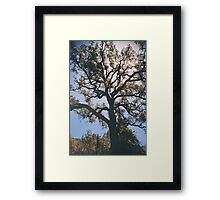 As We Grow and Change Framed Print