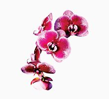 Vivid Maroon Phalaenopsis Orchids Womens Fitted T-Shirt