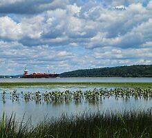 Preferring the Calm-Hudson River by PineSinger