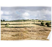 cornwall fields Poster