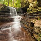 'Macquarie Rivulet, Macquarie Pass National Park, NSW' by Kerrod Sulter