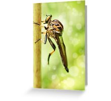 'Robberfly' Greeting Card