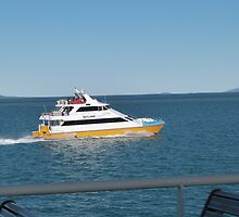 Townsville Ferry Boat heading in!   Far North Queensland. by Rita Blom
