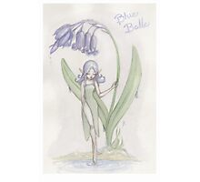 Flower Fairy - Blue Belle  Photographic Print