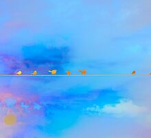 Birds on a Wire by lisapowell