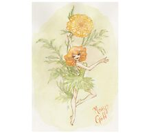 Flower Fairy - Merry Gold Photographic Print