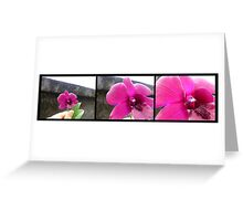 ORCHID PANORAMA FROM UBUD 02 Greeting Card
