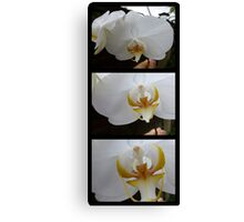 ORCHID PANORAMA FROM UBUD 03 Canvas Print