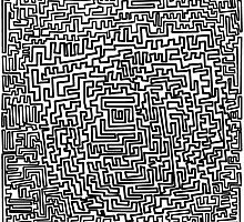 The Maze by chany
