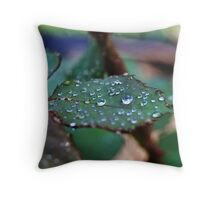 Dew Drops in the Morning Throw Pillow