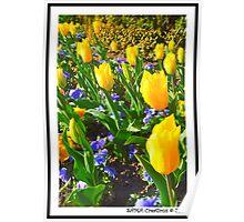 Spring! Poster