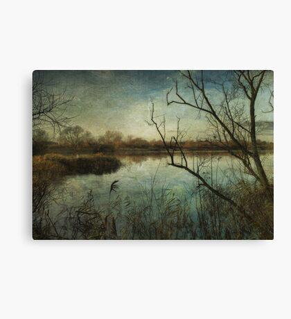 Waterlands Canvas Print
