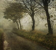 The Poetry of Fog by Sarah Jarrett