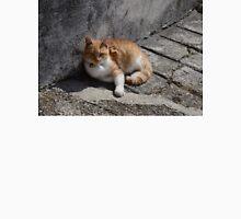 Beautiful Ginger Cat Unisex T-Shirt