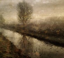 Winter on the Fen by Sarah Jarrett